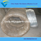 Steel Wire/Nail Wire (BWG18) with Competitive Price