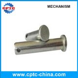 Professional Manufacturing Pin Shaft for Sale