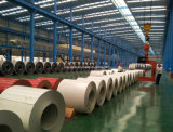 PPGL/PPGI Color Coated Steel Coil