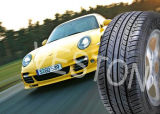 Radial Car Tires Winter Tyre Made in China