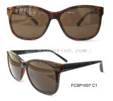 New Design Europe Market Plastic Sun Glasses