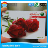 Blank Contact Plastic PVC Printed Gift Smart IC Card