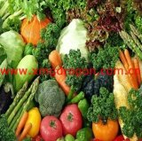 High Quality IQF California Mixed Vegetables (GD-VG018)