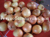 2016 New Crop Fresh Yellow Onion