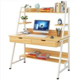 Home Office Computer Desk and Book Shelf