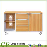 Hot Sales File Cabinet CF-S10309