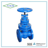 Cast Iron Non-Ringsing Stem Gate Valve