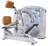 Gym Equipment / Fitness Equipment Low Row
