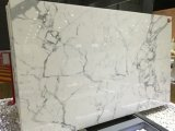 Good Wholesale Bianco Carrara Marble Slabs Price