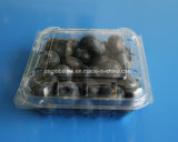 Manufacture Sale 125 Gram Blueberry Packaging Container FDA Approved