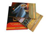 High Quality Education Soft Cover Printing Book (YY-E0001)