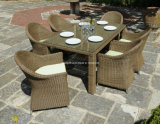 Patio Wicker Furniuture Dining Outdoor Table (DH-8880)