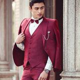Fashionable Coat Pant Suit, Men′s Formal Suit