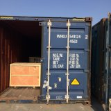 Ocean Freight Service From China to Democratic Republic of The Congo