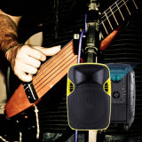 Factory Supply Portable 12 Inches Projection Loudspeaker with Multi-Function