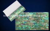 A Grade 14*24cm Flexible Shell Sheet with Sticker for Nail Art