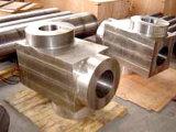 P92/SA336 F92/A182-F92/SA182 F92 Forged/Forging Alloy Steel Valve Body Bodies Shells Blocks Casings