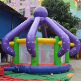 Interesting Inflatable Bouncer for Park