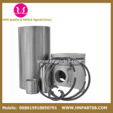 Doosan D2366t Piston Liner Kit for Dh280, Dh290, Dh300