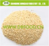 Garlic Granule 8-16mesh G3 with Brc A Grade