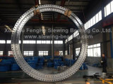 Professional Manufacturer of Slewing Ring, China Slewing Rings