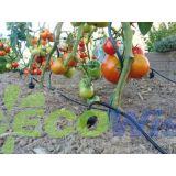 Drip Irrigation System Garden Watering China Manufacturer
