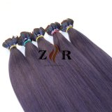 Purple Colour Remy Human Hair Extensions for Korean Factory Price