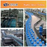 Pet Filled Bottle Conveyor System