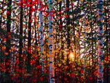 Forest and Sunset on Oil Painting