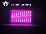 90-260V 300W LED Plant Light for Growing with CE RoHS