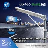 Bluesmart Solar LED Fence Light LED Panel Light