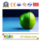 Tinted Float Glass/Clear Float Glass/Laminated Glass/Iusulated Glass