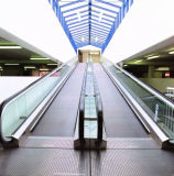 12 Degree Automatic Moving Sidewalk Professional Moving Walk