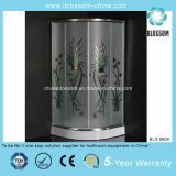 High Quality Easy Installation Shower Enclosure (BLS-9604)