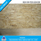 Hot Sell OSB Board Manufacturers for Chile Market