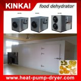 Apricots/ Pineapple/ Fruit and Vegetable Drying Machine/ Air Source Dehydrator