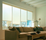 Reasonable Price and Top Qiality of Roller Blind