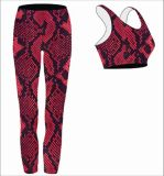Fashion Moisture-Wicking Breathable Custom Yoga Wear for Ladies