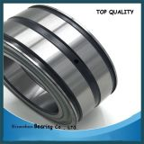 German Quality Full Complement Roller Bearing Nnf5008 SL045008PP