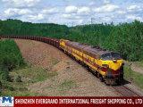Professional China Cis Railway Transport to Ashgabat