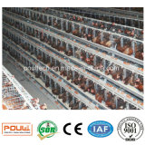Best Price Battery Chicken Cage Layer Poultry Farm