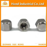 Stainless Steel Hex Cap Nut DIN917