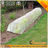 Supply Eco-Friendly Biodegradable Agricultural Fabric
