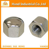 Ss304/316 Hex Cap Nuts (DIN917)