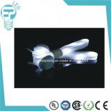 Colorful Nylon LED Shoelace Shoestring