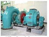 Francis Type Hydraulic Permanent Magnet Generator