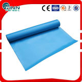 Anti-Corrosion PVC Ingroud Liner Swimming Pool