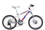 Bicycle (KSBL1071) 2