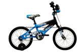 Boy Blue Cool Kids Bicycle with Rear Coaster Brake (SH-KB009)