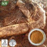 Pueraria Extract, Kudzu Root Extract 40-80% Isoflavones